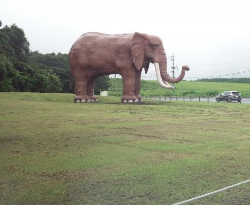 2015.7/別府〜湯布院(その2)今回未訪、アフリカンサファリ前の象の置物…諸事情により、ゆめタウン別府での滞在を優先。(笑)
